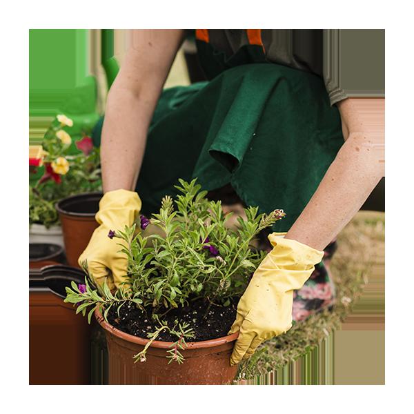 Matériel & équipement de jardinage
